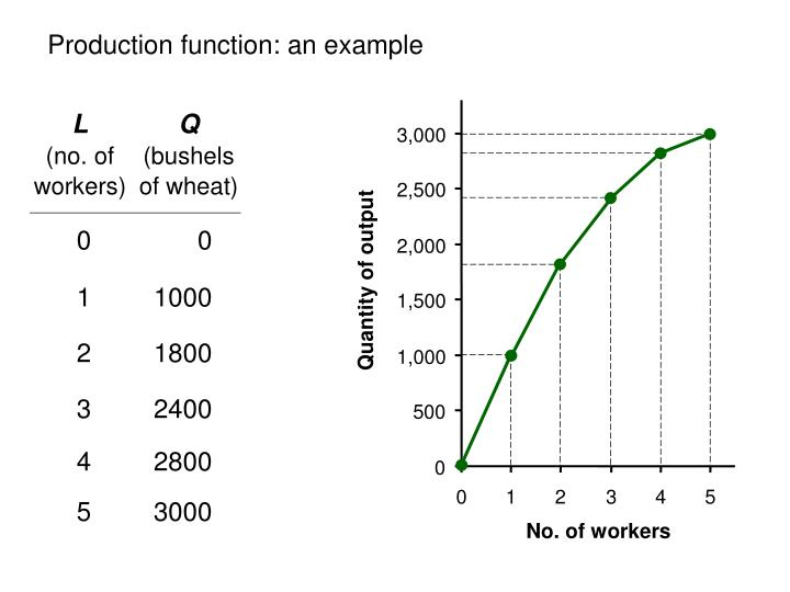 Production function: an example
