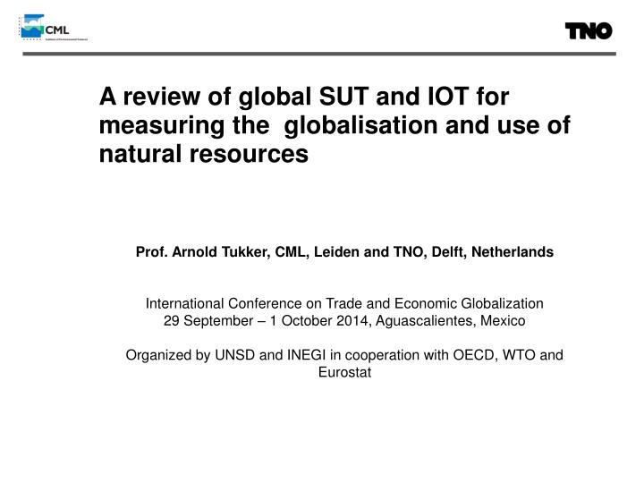 a review of global sut and iot for measuring the globalisation and use of natural resources n.