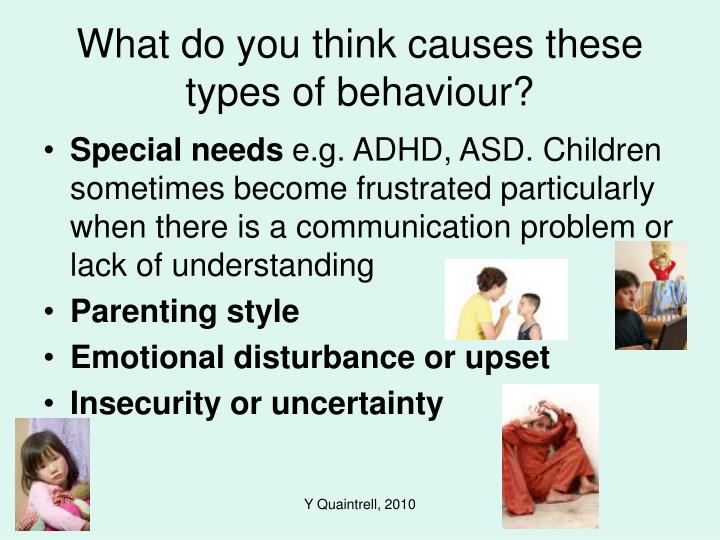 What do you think causes these types of behaviour