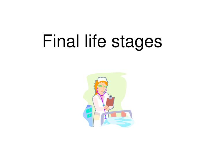 final life stages n.