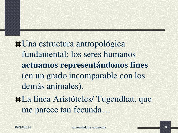 Una estructura antropológica fundamental: los seres humanos