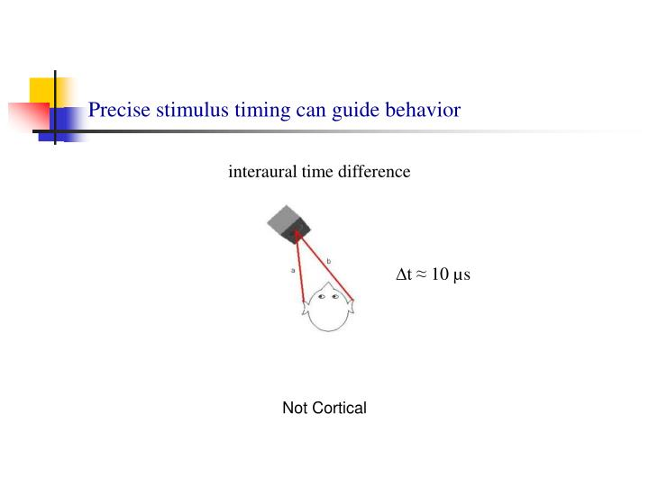 Precise stimulus timing can guide behavior