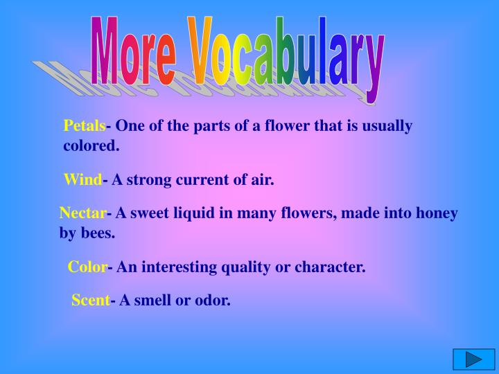 More Vocabulary