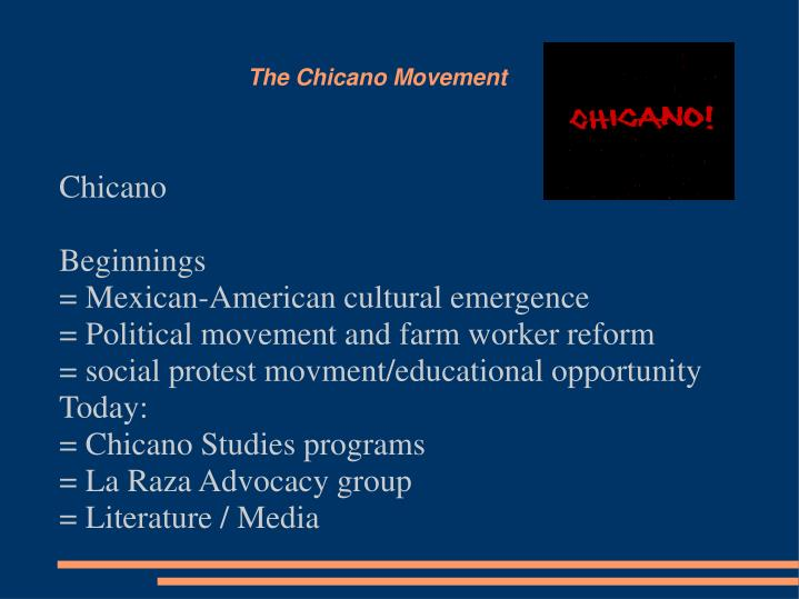 the chicano movement n.