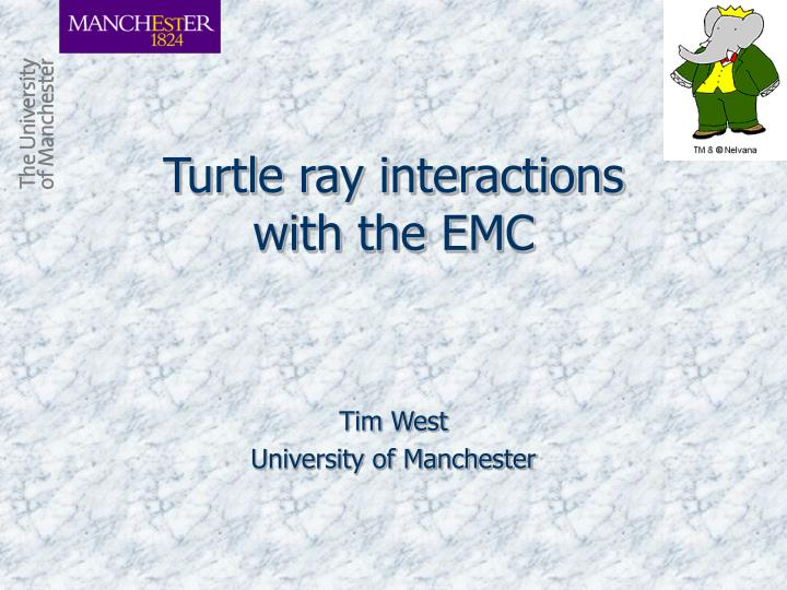 turtle ray interactions with the emc n.