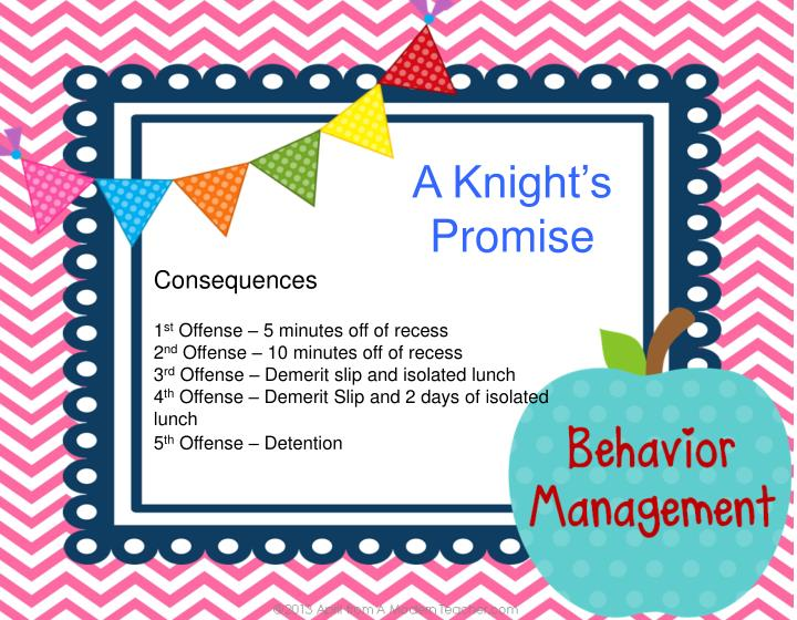 A Knight's Promise