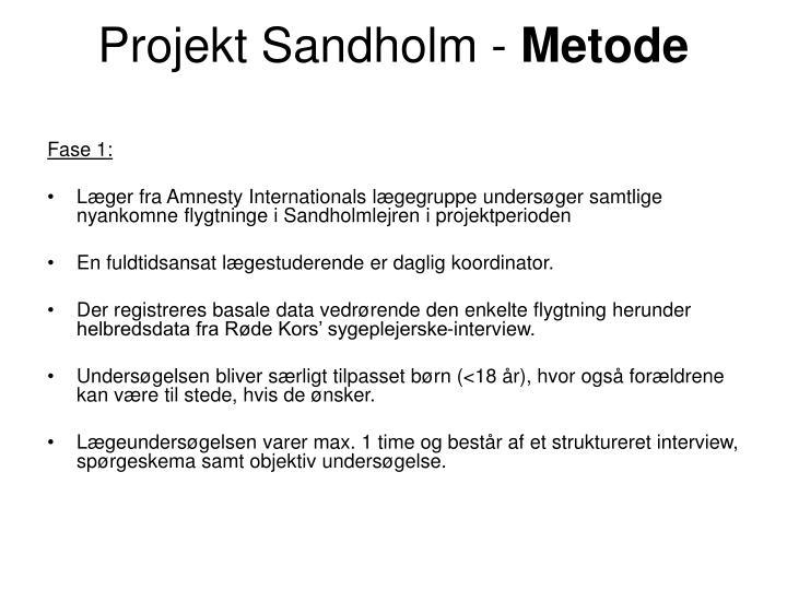 Projekt sandholm metode