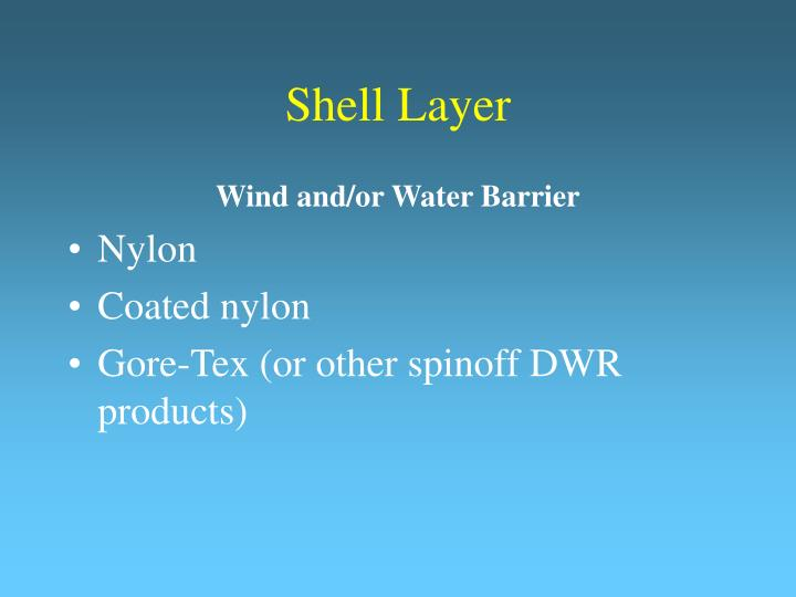 Shell Layer