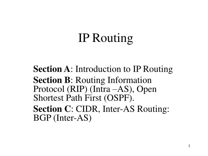 ip routing n.