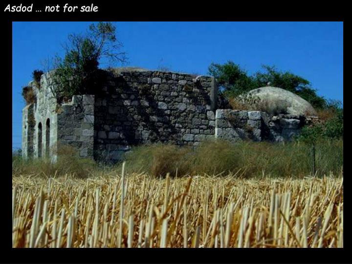 Asdod … not for sale