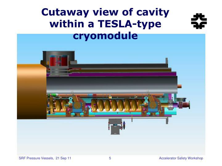 Cutaway view of cavity within a TESLA-type cryomodule