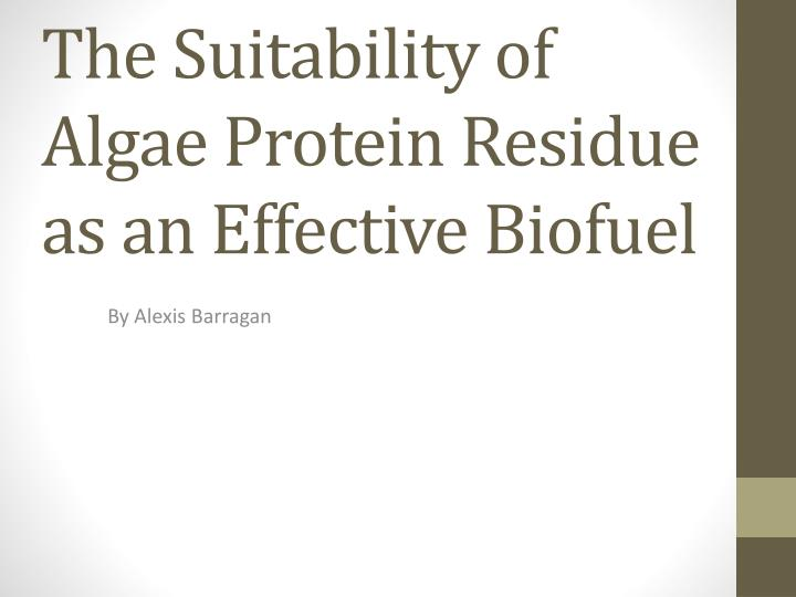 the suitability of algae protein residue as an effective biofuel n.
