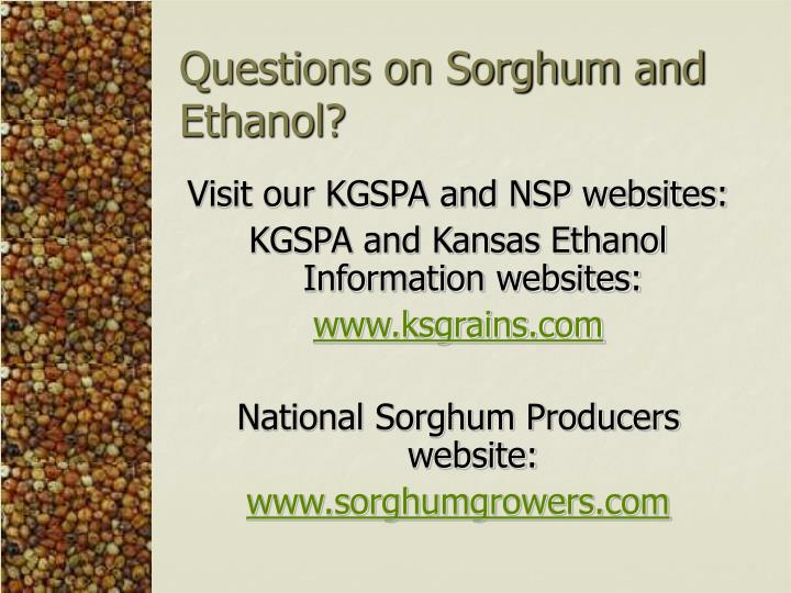 Questions on Sorghum and Ethanol?
