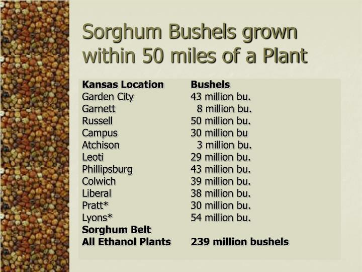 Sorghum Bushels grown within 50 miles of a Plant