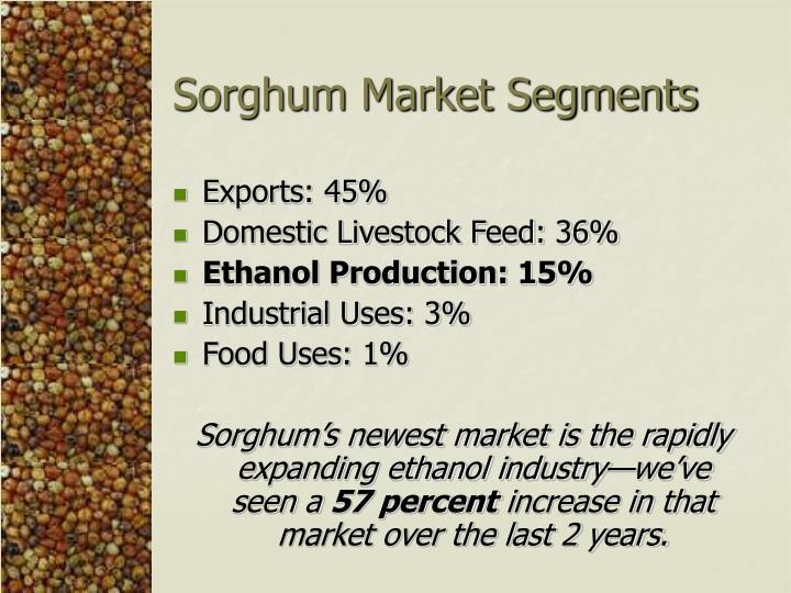 Sorghum Market Segments