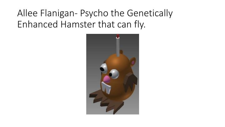 Allee Flanigan- Psycho the Genetically Enhanced Hamster that can fly.