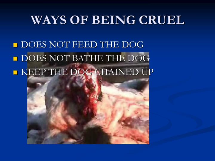 Ways of being cruel