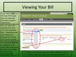 viewing your bill