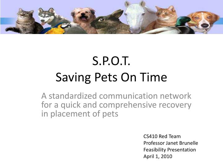 S p o t saving pets on time