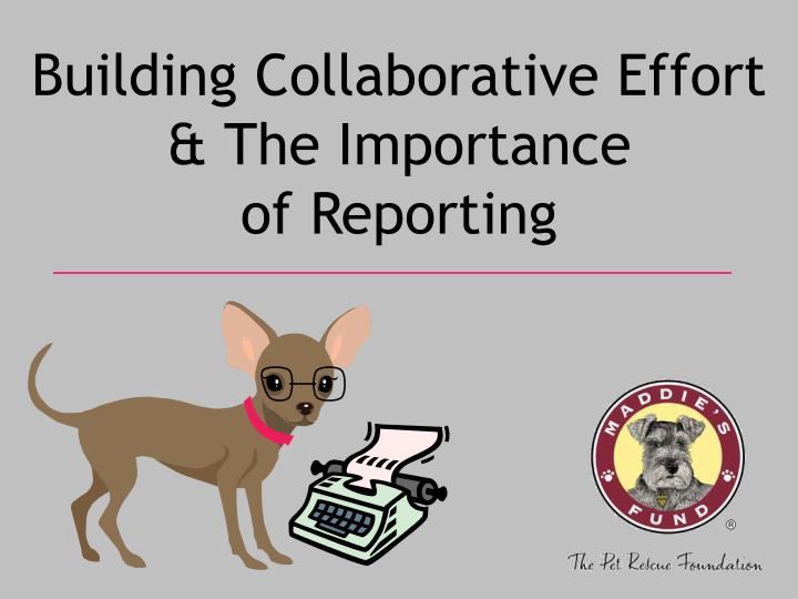 building collaborative effort the importance of reporting n.