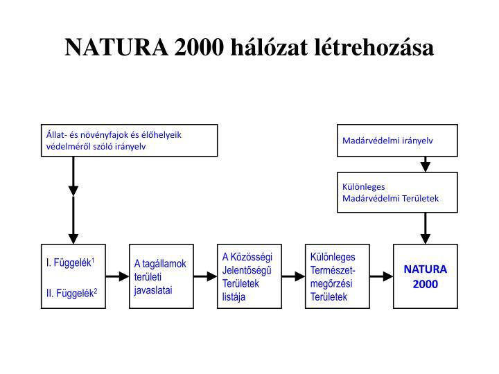 NATURA 2000 hálózat létrehozása