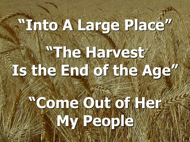 """""""Into A Large Place"""""""