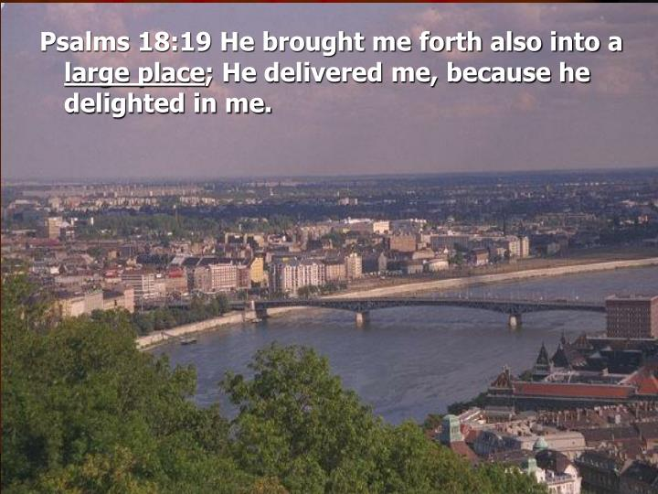 Psalms 18:19 He brought me forth also into a