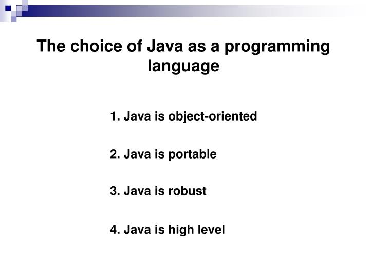 The choice of Java as a programming language