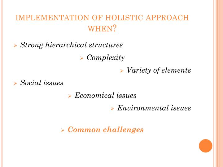 implementation of holistic approach when?