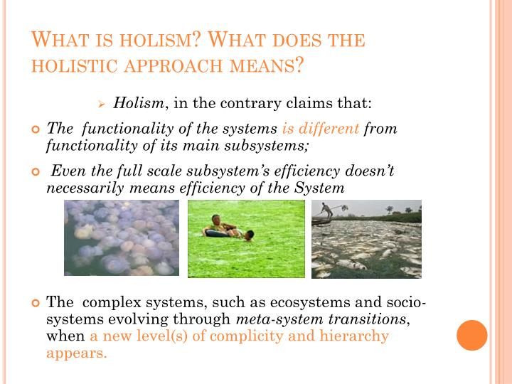 What is holism what does the holistic approach means1