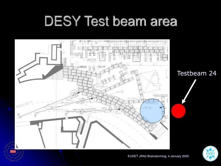DESY Test beam area