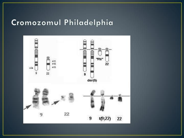 Cromozomul Philadelphia
