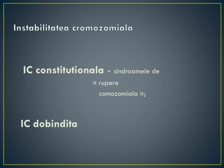 IC constitutionala
