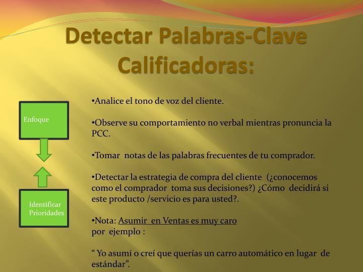 Detectar Palabras-Clave Calificadoras: