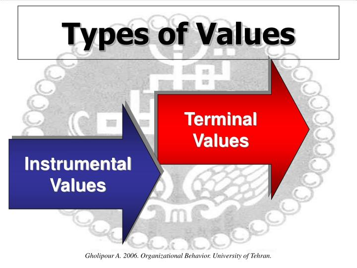 terminal and intrumental values Difference in between ranks in terminal and instrumental values these differences make it difficult when groups have to negotiate with each other and can create serious conflicts when contend with each other over organization's economic and social policies.