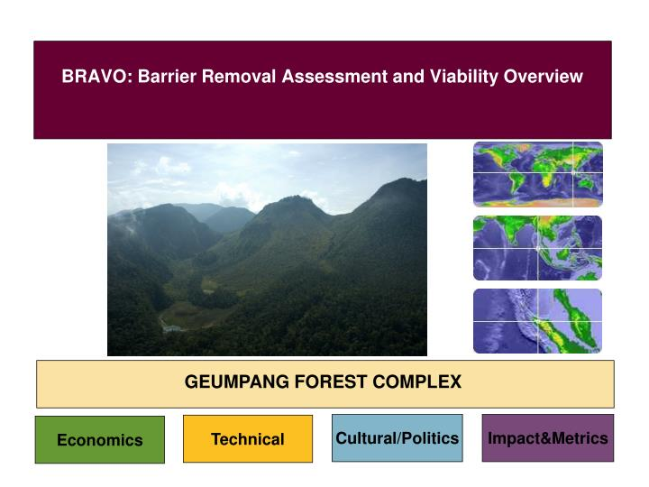 bravo barrier removal assessment and viability overview n.