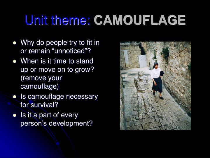 Unit theme camouflage