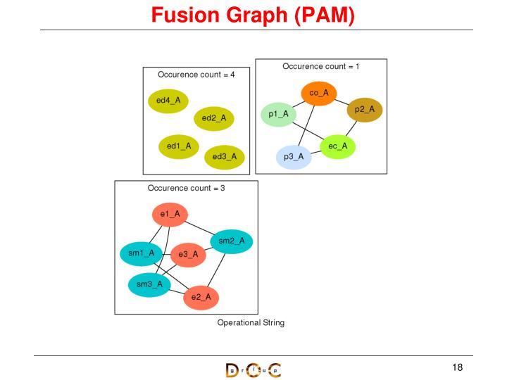 Fusion Graph (PAM)
