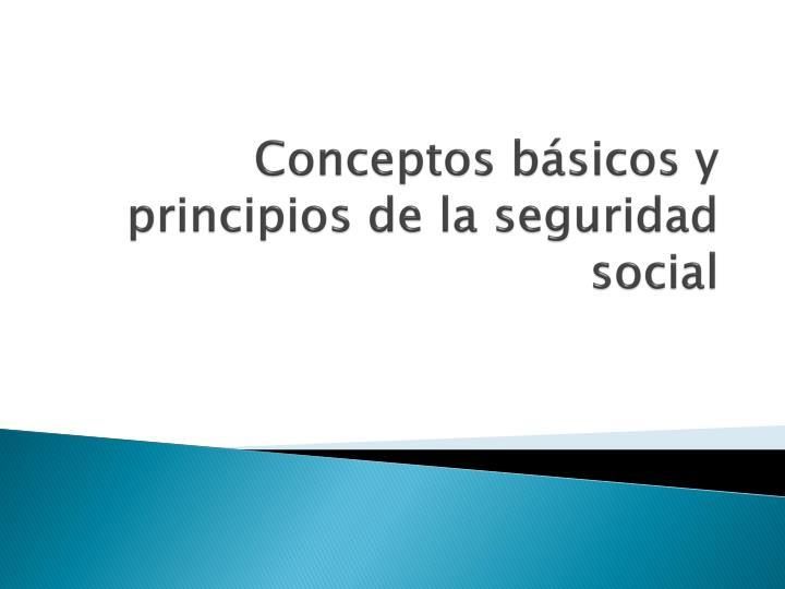 Conceptos básicos y principios de la seguridad social