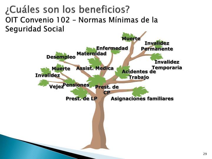 ¿Cuáles son los beneficios?