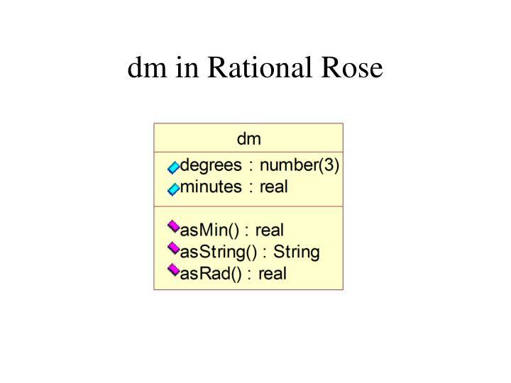 dm in Rational Rose