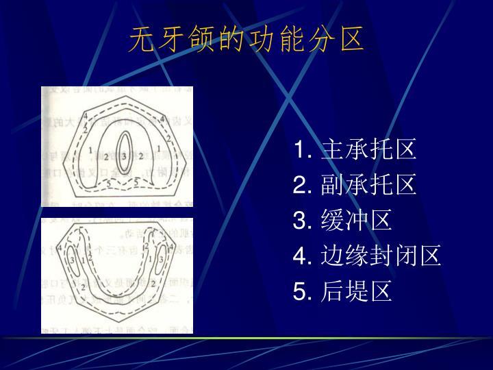 无牙颌的功能分区