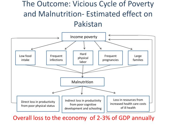 The Outcome: Vicious Cycle of Poverty and Malnutrition- Estimated effect on Pakistan