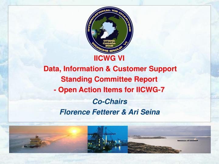 Iicwg vi data information customer support standing committee report open action items for iicwg 7
