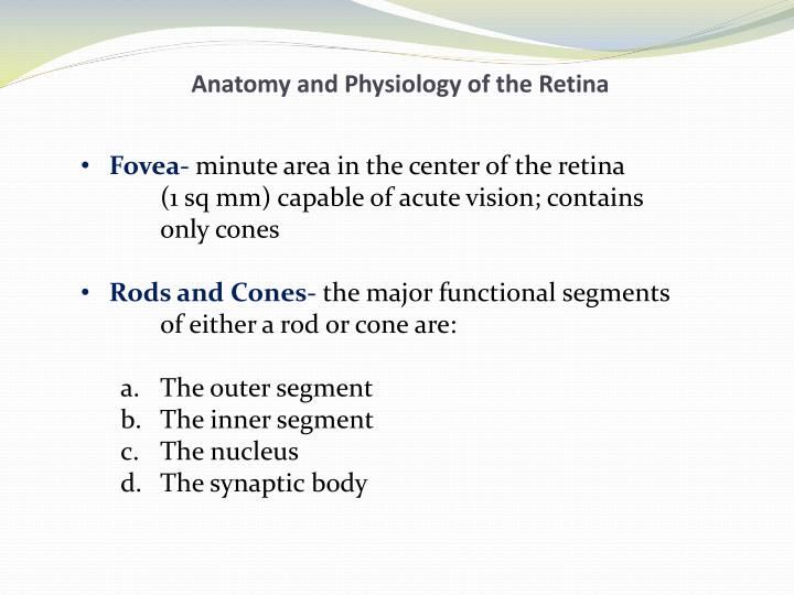 Anatomy and Physiology of the Retina