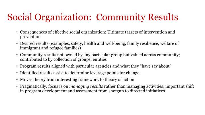 Social Organization:  Community Results