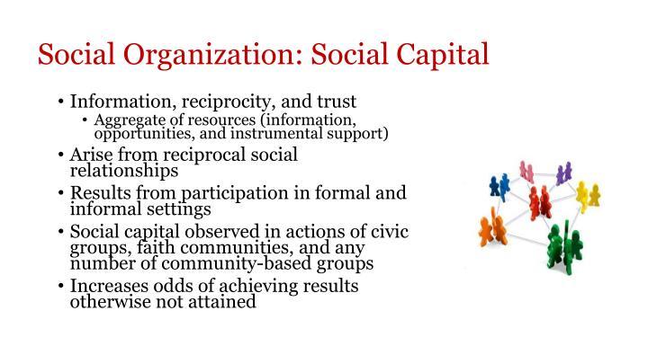 Social Organization: Social Capital