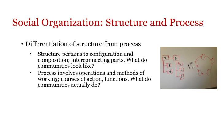 Social Organization: Structure and Process