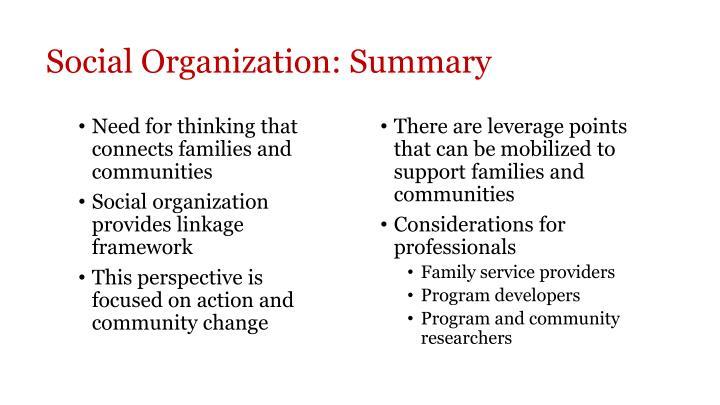 Social Organization: Summary