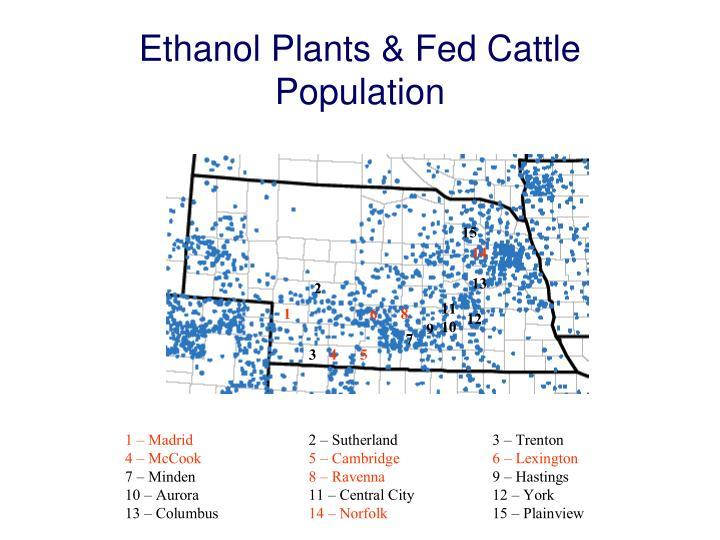 Ethanol Plants & Fed Cattle Population